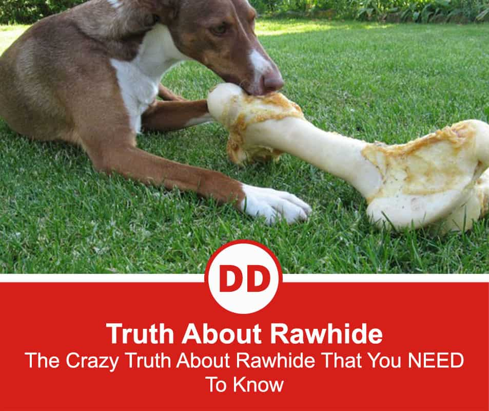 Truth-About-Rawhide