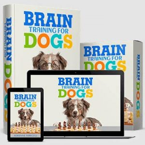brain training for dogs image