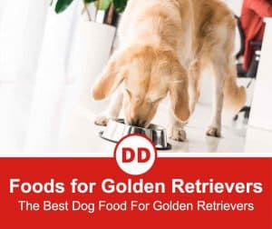 The-Best-Dog-Food-For-Golden-Retrievers