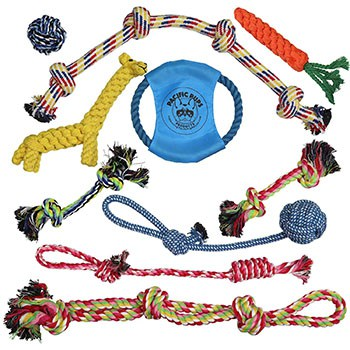 chew ropes for dogs (10 pack)