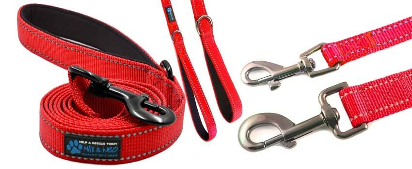 leash in red 1