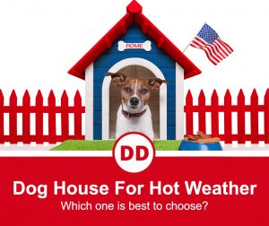 image of jack russell in dog house with american flag