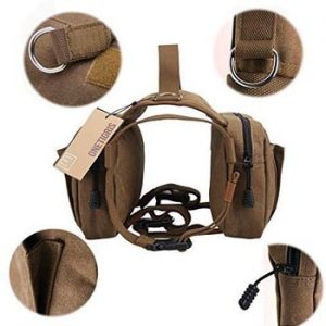 camping dog harness