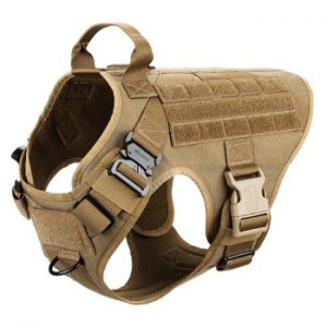 service dog harness for training