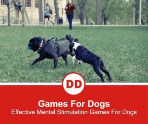 Games-For-Dogs