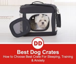 Best-Dog-Crate-Of-2021