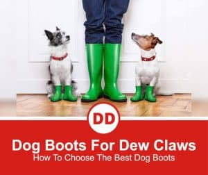 Best-Dog-Boots-For-Dew-Claws