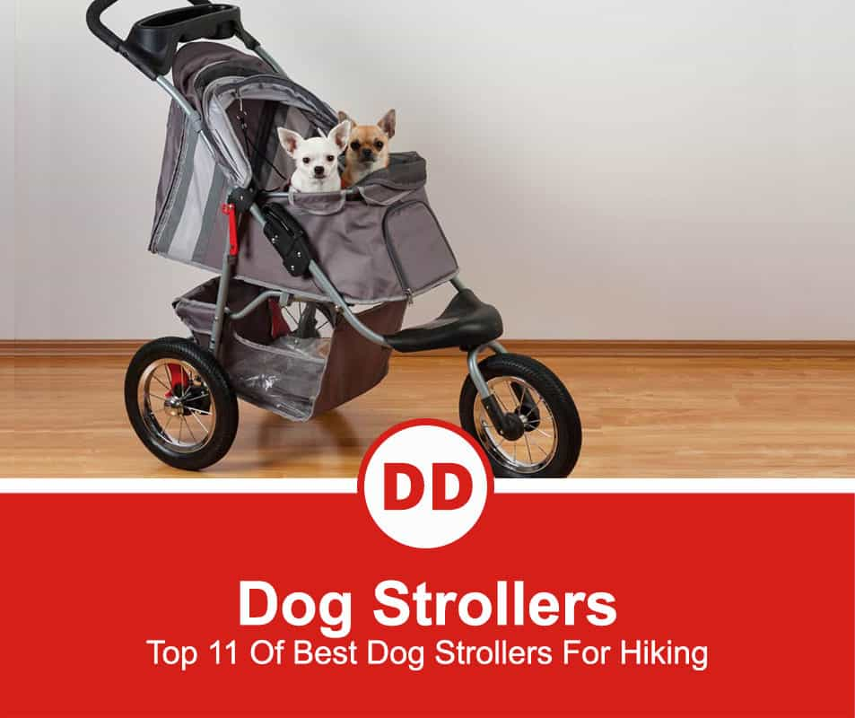 Top-11-Of-Best-Dog-Strollers-For-Hiking