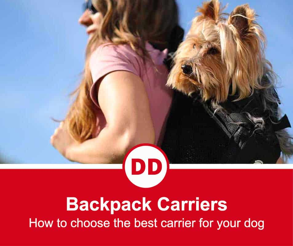 carrying a dog in a backpack to make it easy to travel long distances
