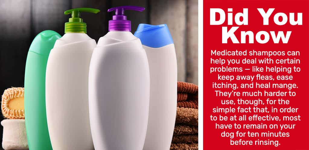 SAYS Medicated shampoos can help you deal with certain problems — like helping to keep away fleas, ease itching, and heal mange. They're much harder to use, though, for the simple fact that, in order to be at all effective, most have to remain on your dog for ten minutes before rinsing.